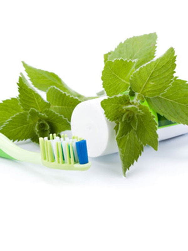 Herbal Healthcare Products - Toothpaste - Sri Lanka