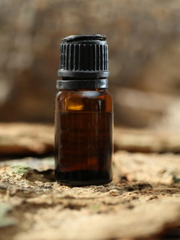 Essential Oil - Sunflower Oil - Sri Lanka