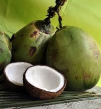 Coconut Based Products - Whole Coconut - Sri Lanka
