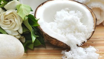 Coconut Based Products - Desiccated Coconut  - Sri Lanka