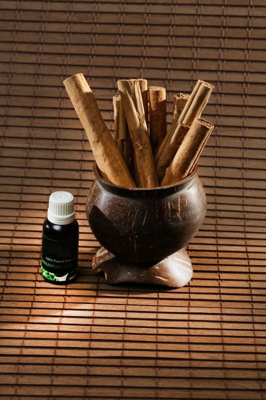Essential Oil - Cinnamon Bark Oil - Sri Lanka