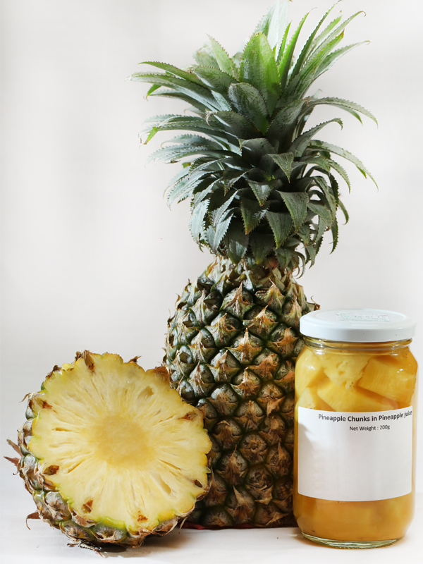 Lanka Exports - Fruits in Syrup - Pineapple Chunks in Pineapple Juice - Sri Lanka